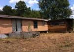 Foreclosure Auction in Plantersville 77363 FM 1774 - Property ID: 1662693994