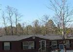 Foreclosure Auction in Pulaski 38478 SANDS RD - Property ID: 1667296207