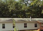 Foreclosure Auction in Lincoln 35096 RIVER BEND LN - Property ID: 1669558348