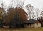 Foreclosure Auction in Brownsboro 75756 COUNTY ROAD 3406 - Property ID: 1671754351