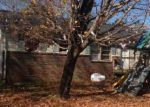 Foreclosure Auction in Waverly 37185 FAIRFIELD DR - Property ID: 1694993700