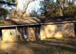 Foreclosure Auction in Hawkinsville 31036 FOREST HILL CIR - Property ID: 1706117801