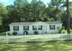 Foreclosure Auction in Wewahitchka 32465 JIM RISH ST - Property ID: 1709282142