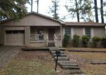 Foreclosed Home in Mabelvale 72103 WOODLAND DR - Property ID: 1142463659