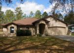 Foreclosed Home in Dunnellon 34431 SW 204TH AVE - Property ID: 1296510945