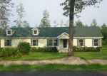 Foreclosed Home in Hortense 31543 BOOTS HARRISON RD - Property ID: 1841275699