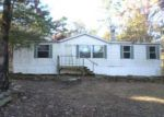 Foreclosed Home in Delaware 72835 RIVERSIDE RD - Property ID: 2178860802