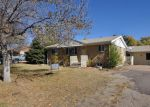 Foreclosed Home in Thornton 80229 CYPRESS DR - Property ID: 2381892842