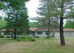 Foreclosed Home in Rhodes 48652 CARTER RD - Property ID: 2434986676