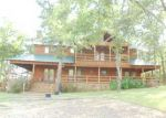 Foreclosed Home in Scroggins 75480 LOST CREEK TRL - Property ID: 2726223166