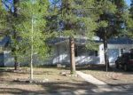 Foreclosed Home in Leadville 80461 LODESTONE DR - Property ID: 2743004588