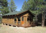 Foreclosed Home in Westcliffe 81252 SAN JUAN RD - Property ID: 2744268128