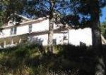 Foreclosed Home in Ruidoso 88345 TENNIS CT - Property ID: 2761891784