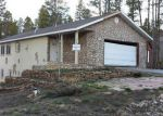 Foreclosed Home in Leadville 80461 COMSTOCK CT - Property ID: 2765716155