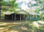 Foreclosed Home in Lewiston 49756 BIG WOLF LAKE RD - Property ID: 2823702611