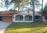 Foreclosed Home in Palm Coast 32137 BELLMORE PL - Property ID: 2848705225