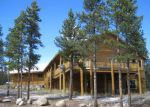 Foreclosed Home in Leadville 80461 PEAK VIEW DR - Property ID: 2925857412