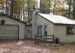 Foreclosed Home in Fife Lake 49633 LAKE SHORE DR - Property ID: 2939913754