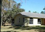 Foreclosed Home in Spring Hill 34610 CARTHAGE AVE - Property ID: 2954615218