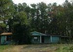 Foreclosed Home in Chatsworth 30705 HIGHWAY 225 S - Property ID: 2962205306