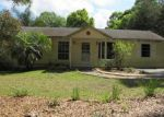 Foreclosed Home in Orange City 32763 DALEY ST - Property ID: 2963998373