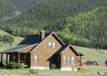 Foreclosed Home in Creede 81130 PINE DR - Property ID: 3000286274