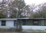 Foreclosed Home in Saint Augustine 32092 COLEE COVE RD - Property ID: 3013283144