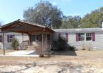 Foreclosed Home in Chipley 32428 SPOTTED HORSE LN - Property ID: 3101812596