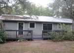 Foreclosed Home in Newberry 32669 NW 32ND AVE - Property ID: 3158130347