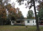 Foreclosed Home in Newaygo 49337 E 36TH ST - Property ID: 3162699291