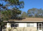Foreclosed Home in Tampa 33624 COUNTRY LAKE DR - Property ID: 3189405645