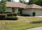 Foreclosed Home in Homosassa 34446 BLUE BEECH CT - Property ID: 3194370960