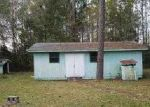 Foreclosed Home in Wewahitchka 32465 JOE AVE - Property ID: 3195183841