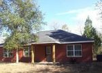Foreclosed Home in Hawthorne 32640 ALABAMA DR - Property ID: 3197527879