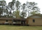 Foreclosed Home in Douglas 31533 INDIAN TRL - Property ID: 3202540930