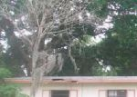 Foreclosed Home in Orlando 32808 CASSATT AVE - Property ID: 3230986451