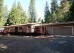Foreclosed Home in Pioneer 95666 MEADOW VISTA DR - Property ID: 3270250831