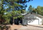 Foreclosed Home in Pine Grove 95665 TANYARD HL W - Property ID: 3270482962