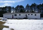 Foreclosed Home in Gaylord 49735 N TOWNLINE RD - Property ID: 3274182513