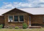 Foreclosed Home in Grayling 49738 TURKEY RUN - Property ID: 3274403695