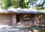 Foreclosed Home in Lake Placid 33852 BUCK ST - Property ID: 3283428588