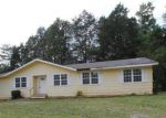 Foreclosed Home in Sevierville 37876 ED HUFF CIR - Property ID: 3288189357