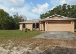 Foreclosed Home in Spring Hill 34610 DUANE CT - Property ID: 3312111946