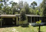 Foreclosed Home in Homosassa 34446 S ORCHARD TER - Property ID: 3313715356