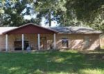 Foreclosed Home in Riverview 33569 CREEKVIEW DR - Property ID: 3335350848