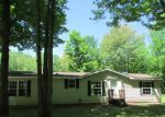 Foreclosed Home in Gaylord 49735 BLACKBERRY LN - Property ID: 3337217933