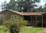 Foreclosed Home in Hampton 29924 MELVINS CIR - Property ID: 3345861784