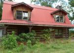 Foreclosed Home in Sevierville 37876 ARNOLD PARK WAY - Property ID: 3346138581