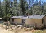 Foreclosed Home in Garden Valley 95633 GARDEN VIEW RD - Property ID: 3353210548