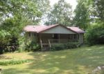 Foreclosed Home in Lincoln 35096 EUREKA RD - Property ID: 3355589619